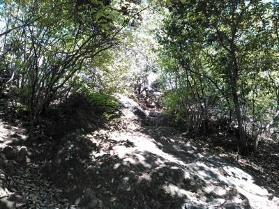 岩山展望への道